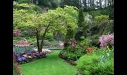 植物绿化设计中地被植物的应用及配置
